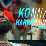 Harrysong Konna ft Rudeboy Video