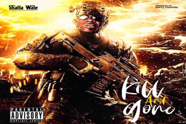 Shatta Wale Kill And Gone 768x512 1