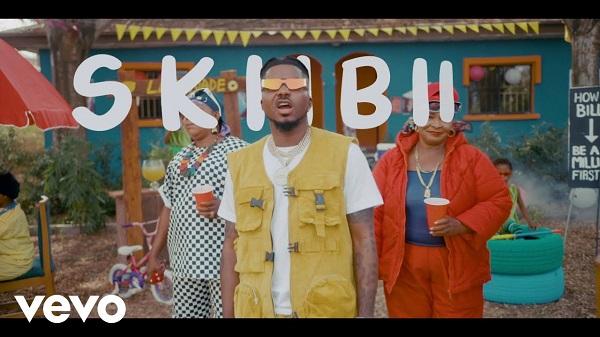 Skiibii Are You Vhere Video
