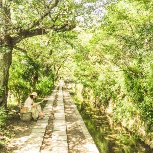 Le chemin de la Philosophie - Kyoto