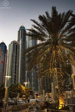 La Marine - Dubai - Émirats Arabes Unis
