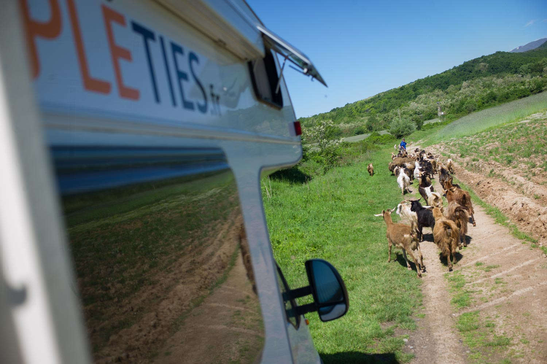 Travailler et traverser l'Europe en camping-car