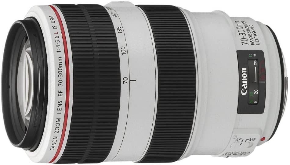 L'objectif Zoom Canon EF 70-300 mm, idéal pour de l'animalier à un prix très raisonnable pour sa catégorie.