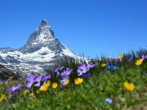 2 visites à ne surtout pas manquer lors de votre séjour en Suisse