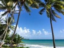 Des vacances inoubliables en Martinique