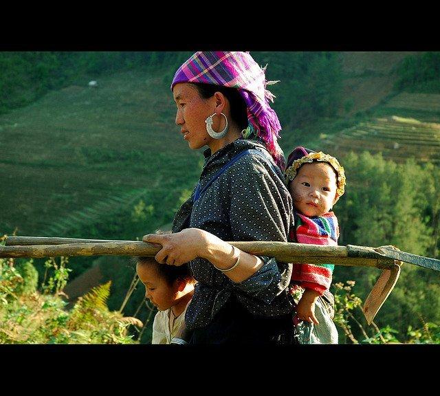 Les rizières en terrasse : un atout touristique pour Tây Bac