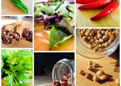 Le Vietnam Gourmet et Bien-être 4*