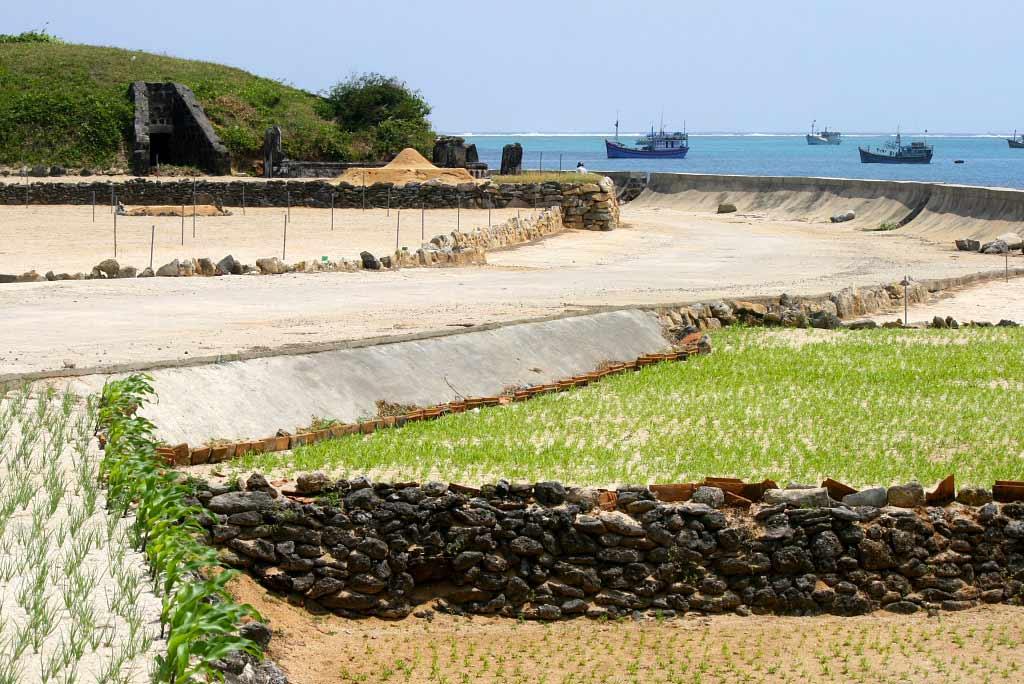 Ile de Lý Sơn, Vietnam