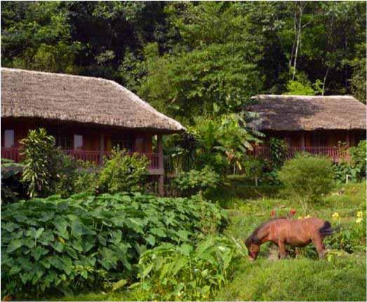 Ecolodge Panhou Village-Thong Nguyen, Vietnam