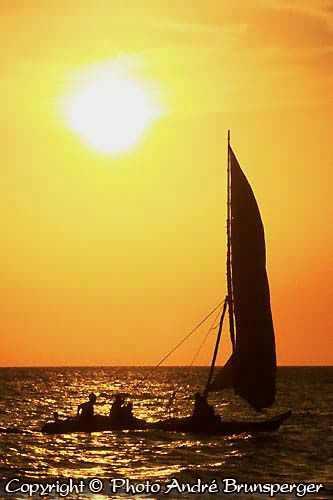 Excursion Circuit nager avec les Dauphins Zanzibar 10 jours. Voyage séjour Zanzibar
