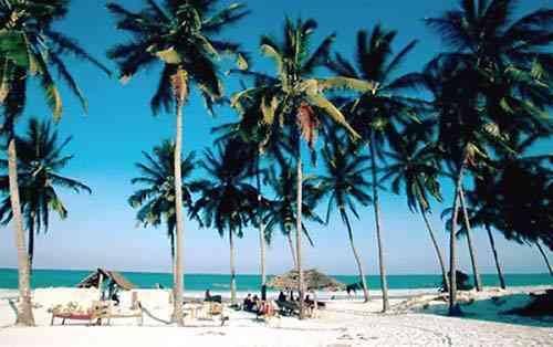 ocean indien plage15 500