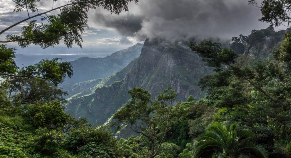 Usambara Mountains,