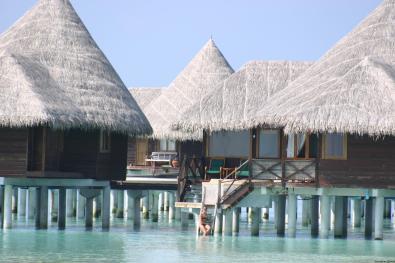 Villa pilotis Coco Palm