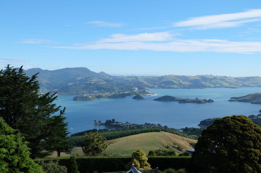 roadtrip-nouvelle-zelande-dunedin-otago-blog-voyage-06