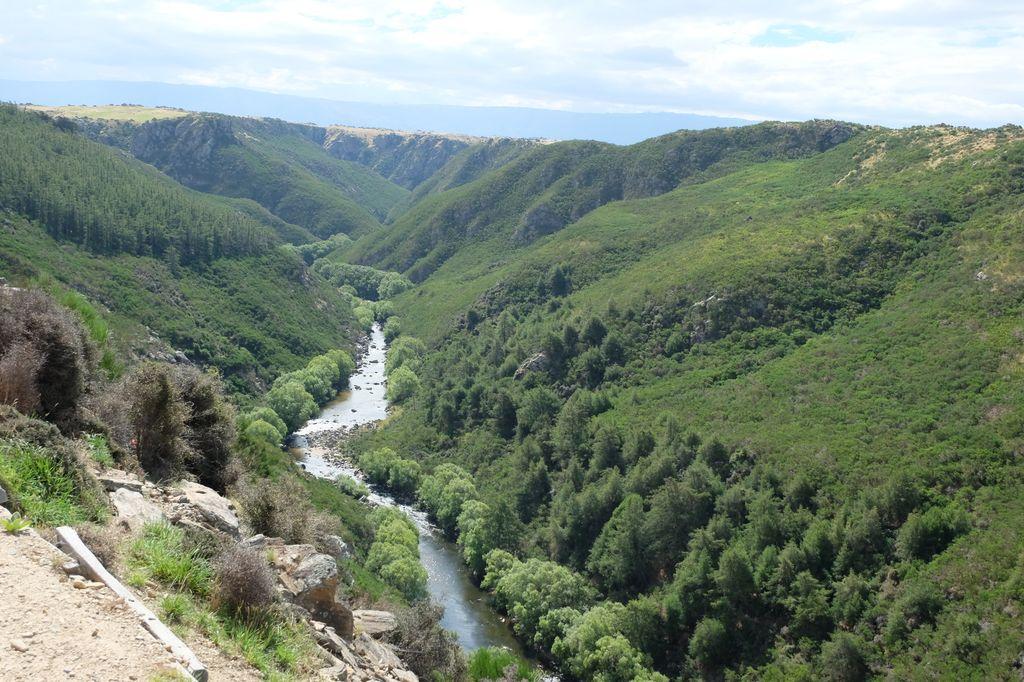 roadtrip-nouvelle-zelande-dunedin-otago-blog-voyage-12