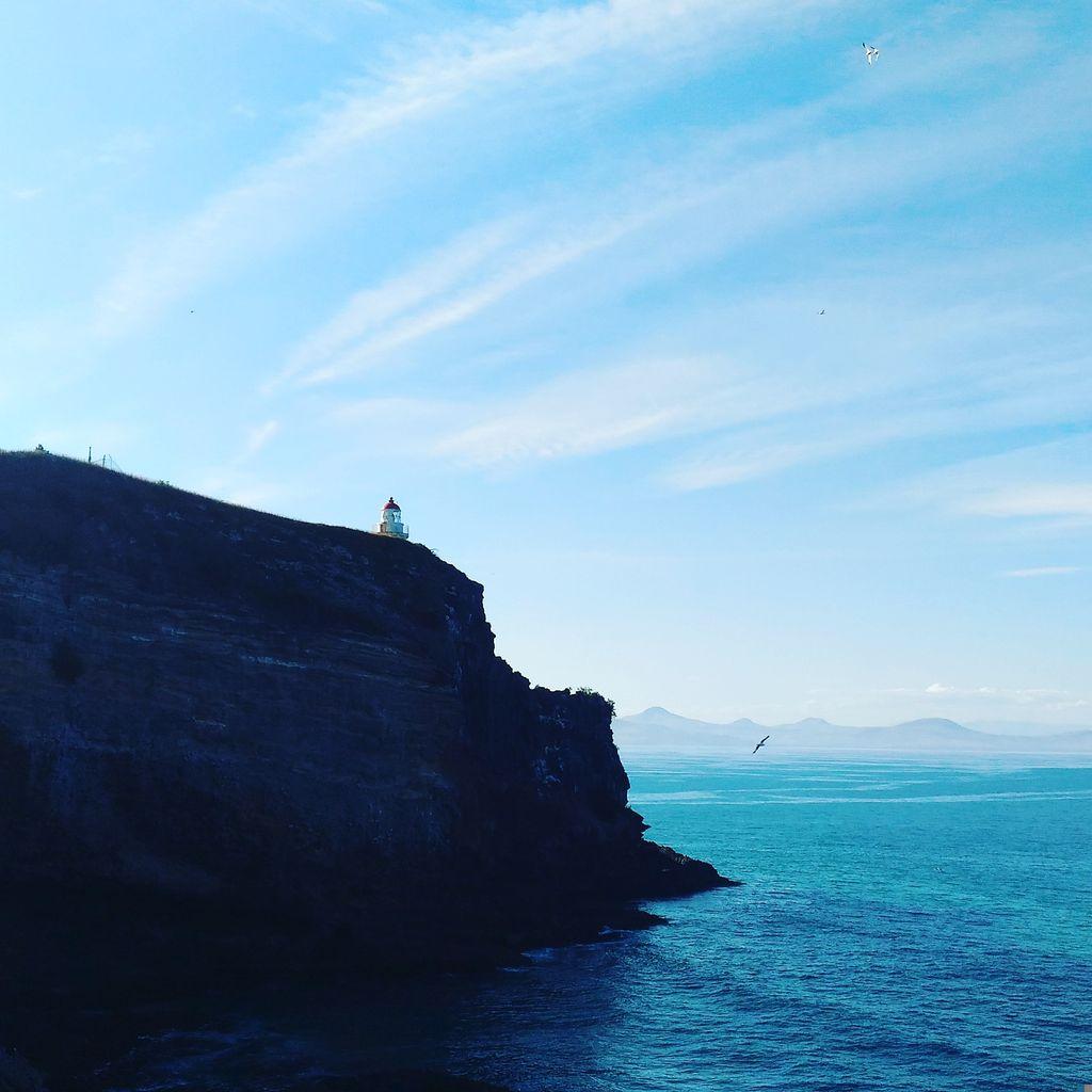 roadtrip-nouvelle-zelande-dunedin-otago-blog-voyage-15