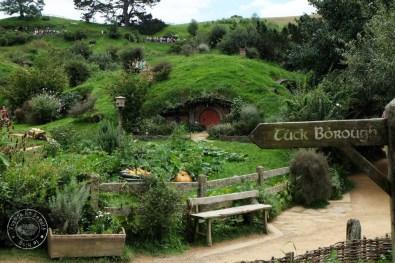 roadtrip-nouvelle-zelande-hobbiton-blog-voyage-02