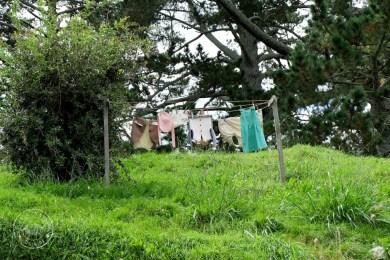 roadtrip-nouvelle-zelande-hobbiton-blog-voyage-09