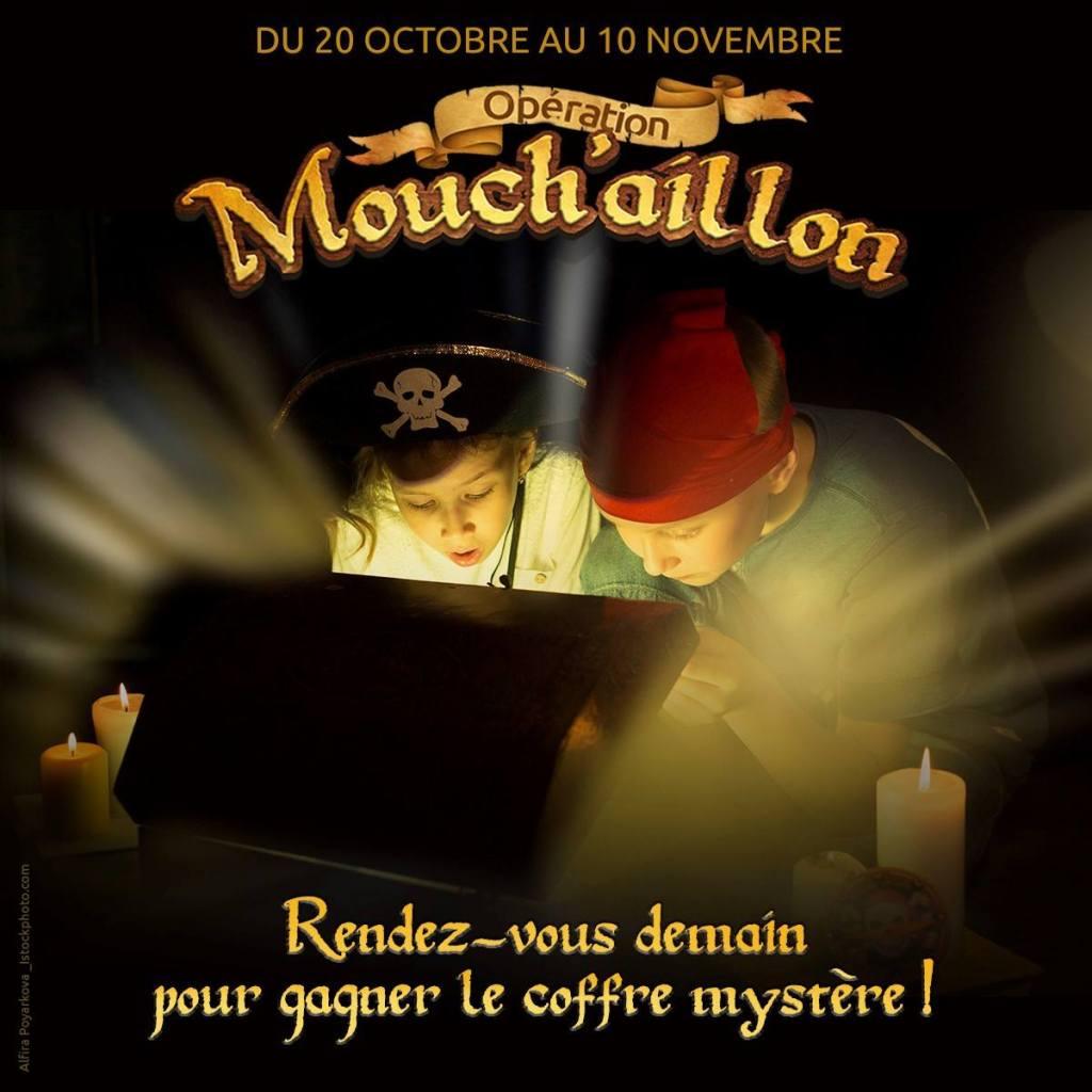 operation-mouchaillon-bateaux-mouches-paris-cadeau