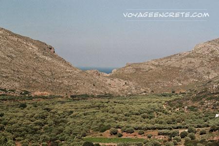 Randonnées en Crète : : les Gorges d'Hohlakies