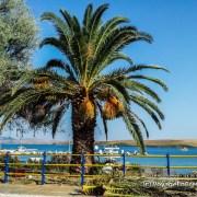 180255-lemnos-island-ile