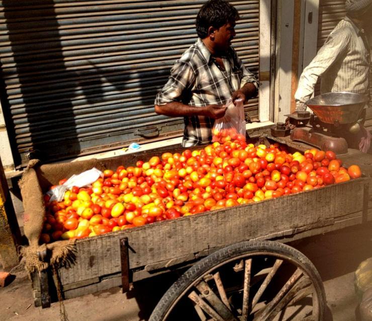 street vendor tomatoes in new delhi