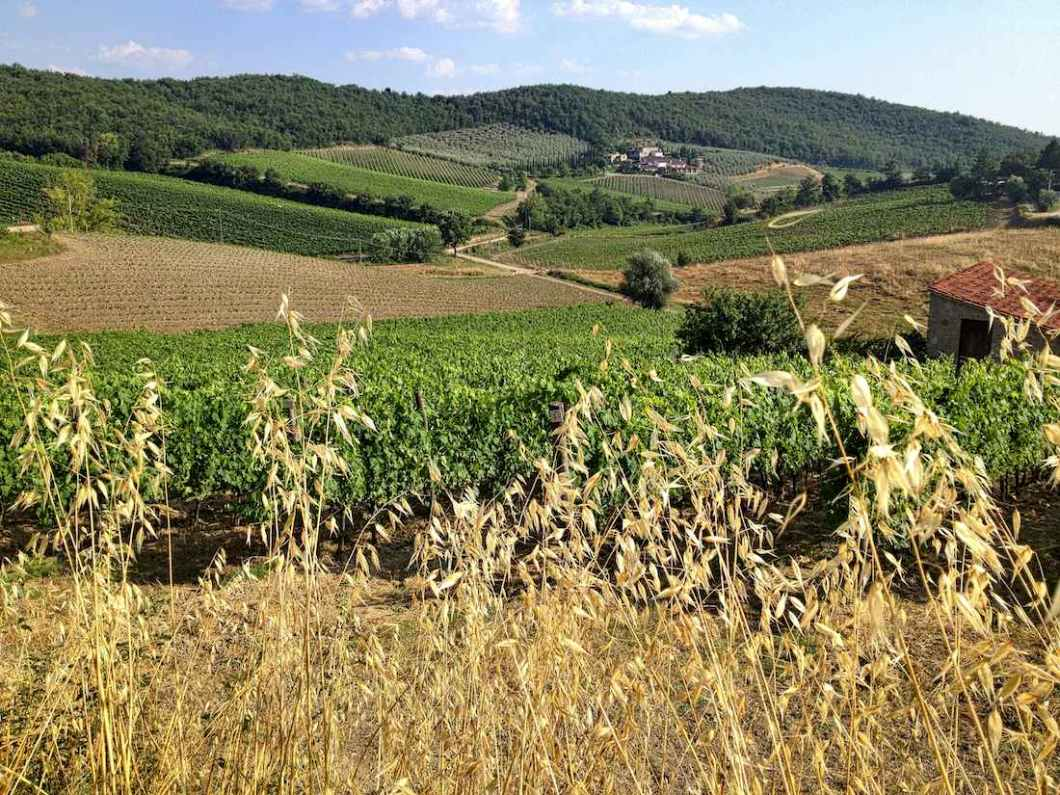 tuscany-rolling-hills