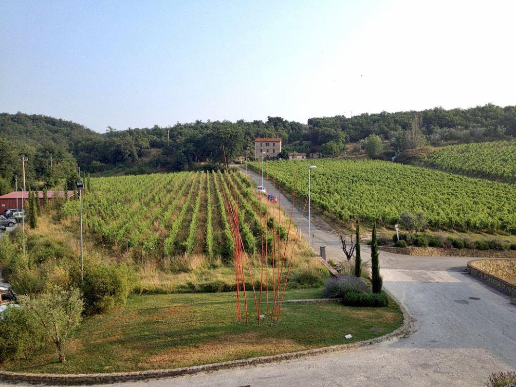 castel-monastero-vineyard