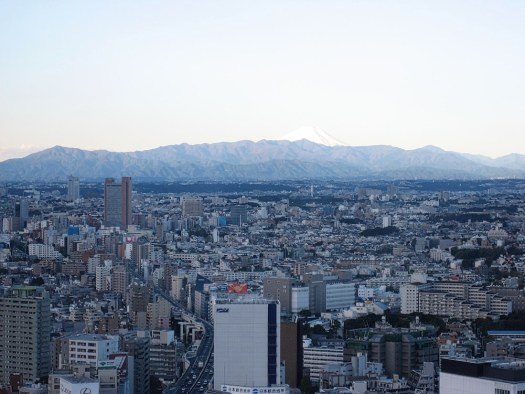 tokyo-view-from-cerulean-tower