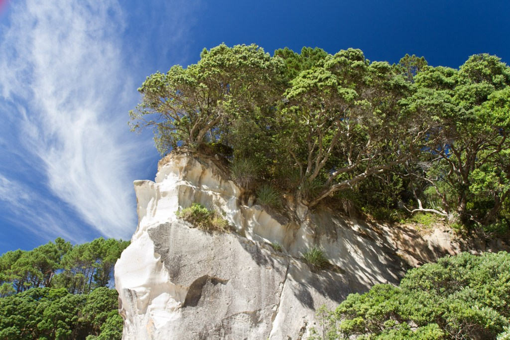 Cathedral Cove - 1