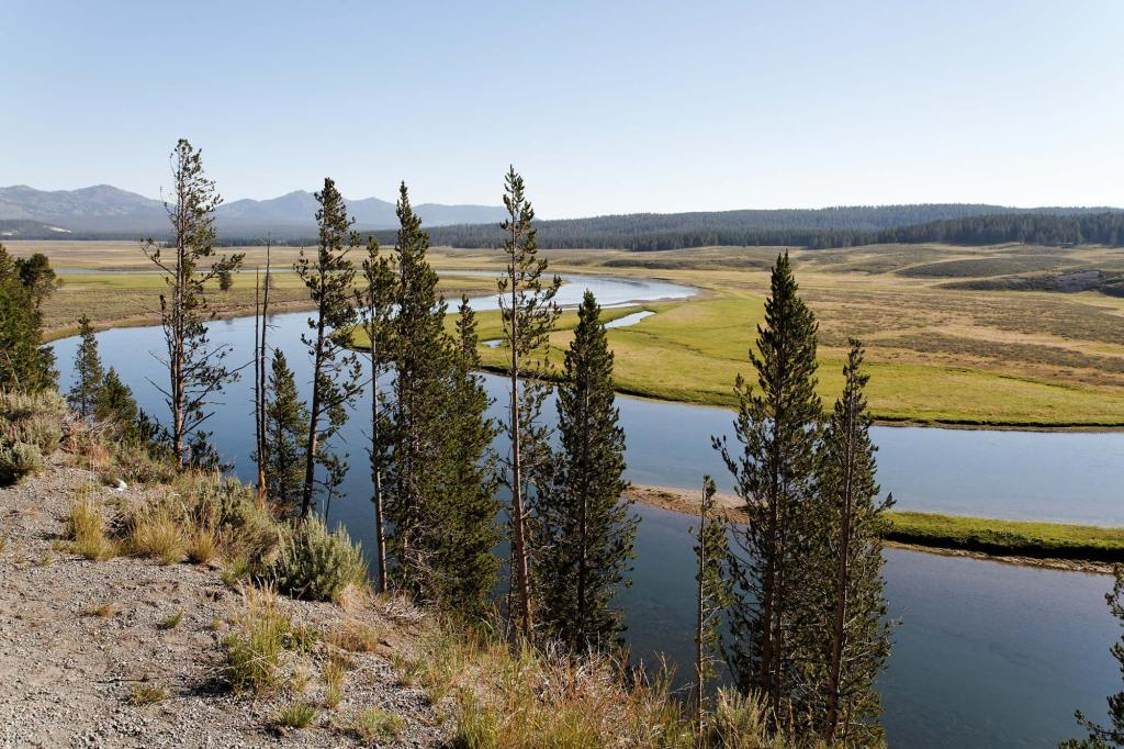 Yellowstone-National-Park-Riviere