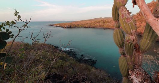 A view overlooking the coast of San Cristobal during our trek from Playa Mann
