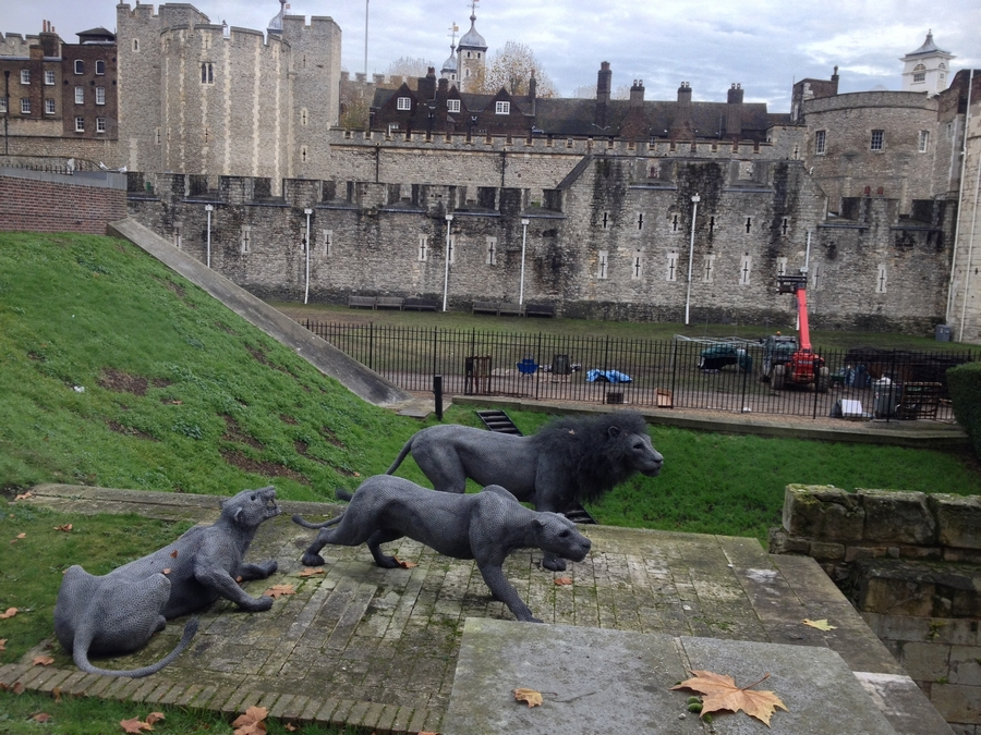 Lions statues at the Tower of London - London, England