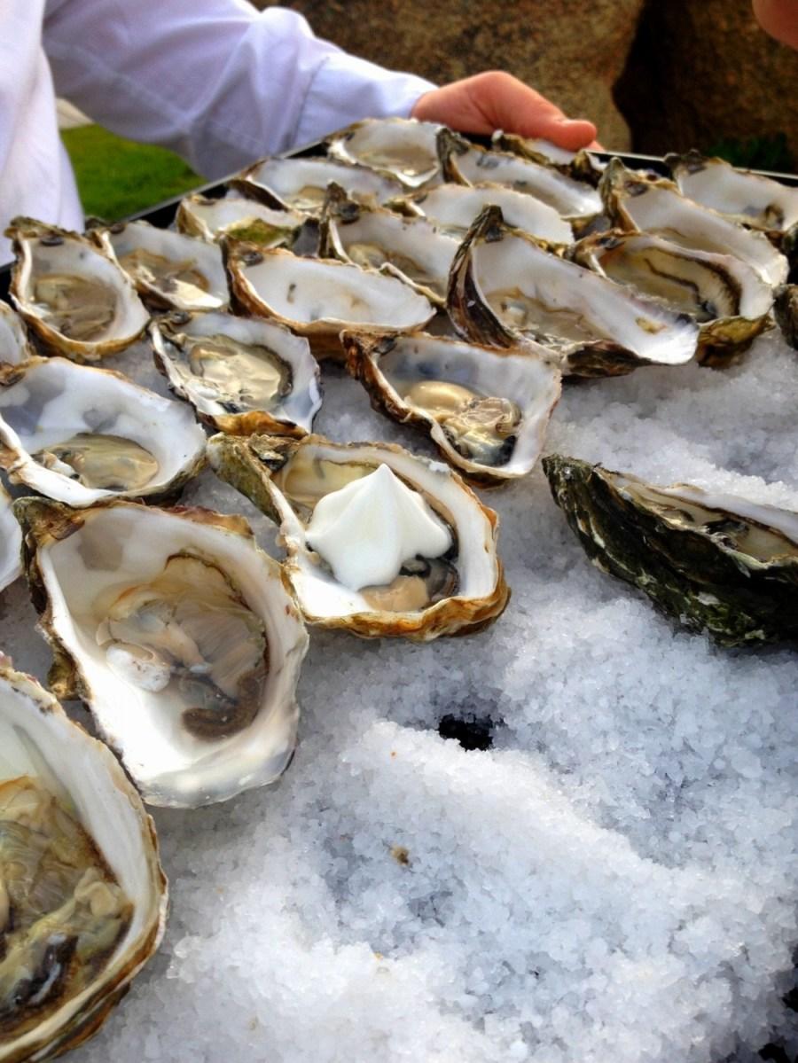 Delicious oysters with a salted emulsion - Porticcio Sofitel hotel, Corsica