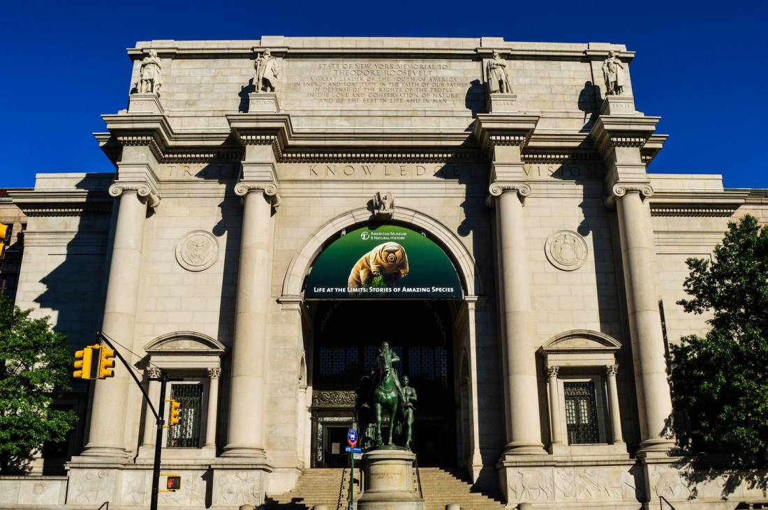 The American Museum of Natural History - New York, Etats-Unis