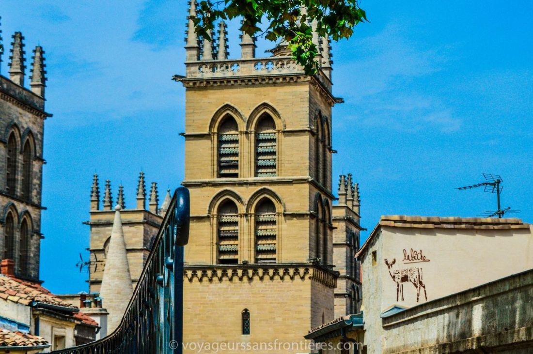 View on the Cathédrale Saint-Pierre from the Place de la Canourgue - Montpellier, France