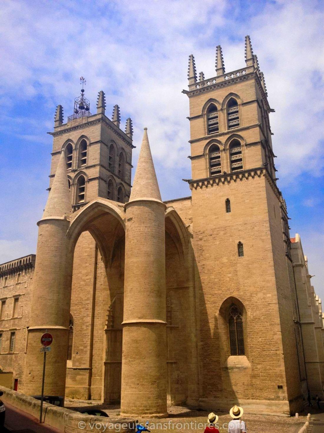 The Cathédrale Saint-Pierre - Montpellier, France