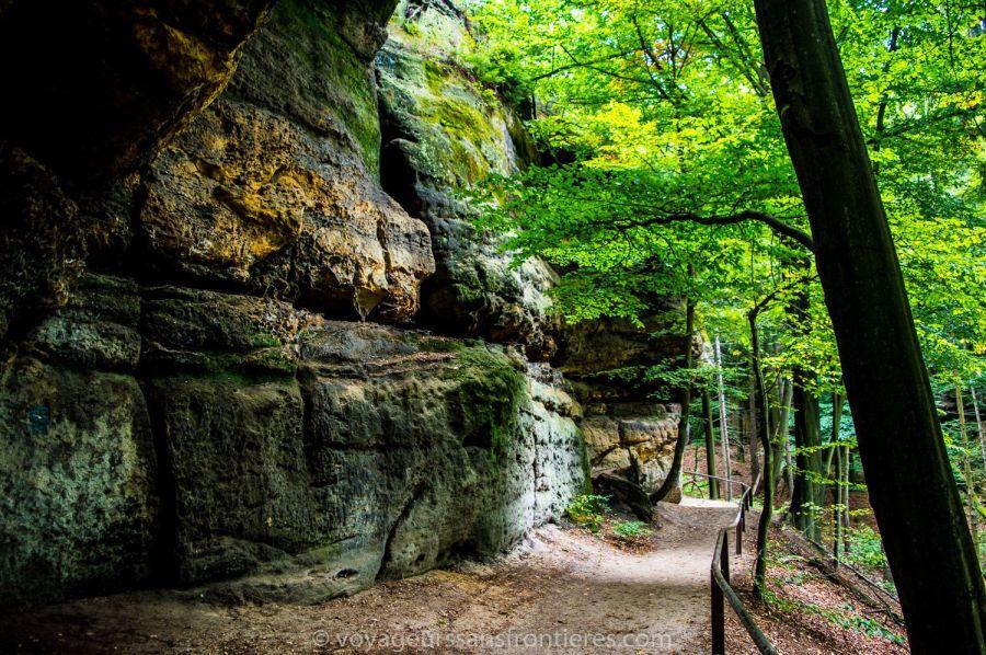 En route vers la Pravcicka Gate dans le Parc National de la Suisse bohémienne - Bohème du Nord, République Tchèque