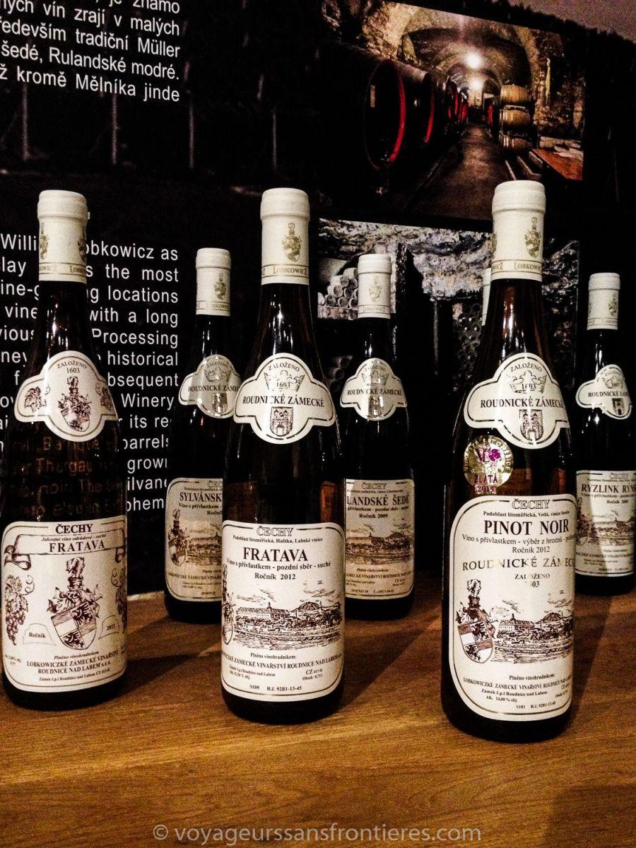 Wine tasting in Litomerice - Northwest Bohemia, Czech Republic