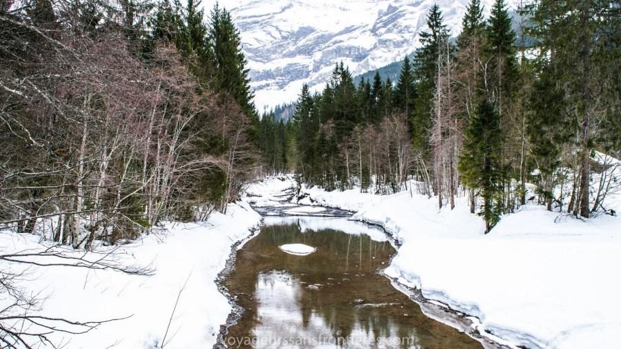 Belle balade dans la forêt enneigée - Les Diablerets, Suisse