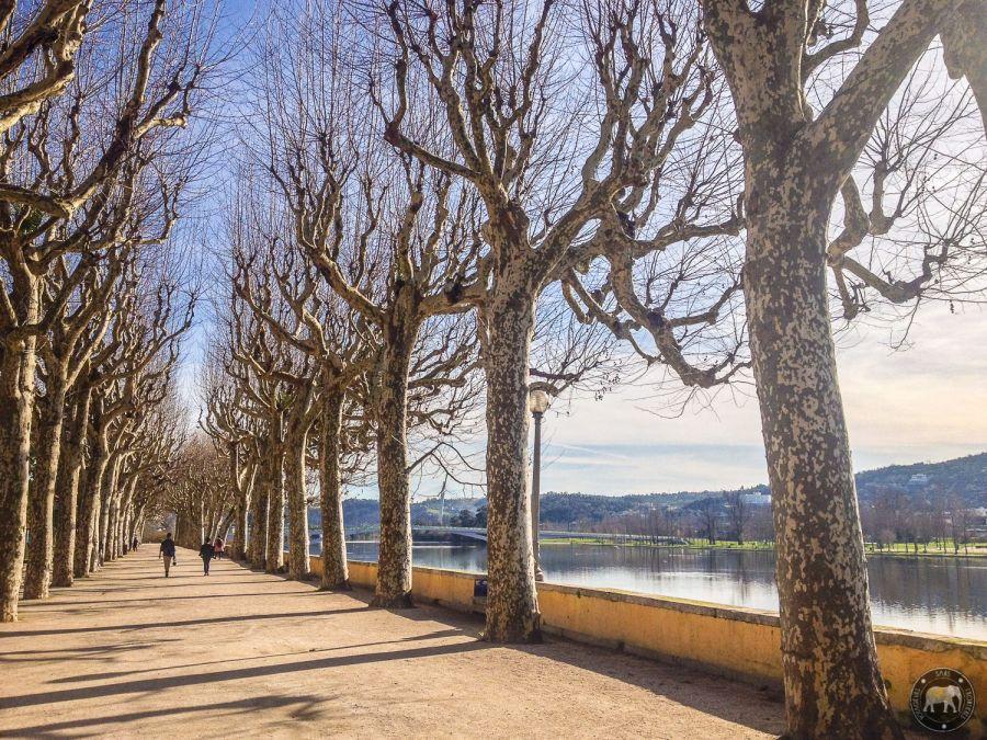 Sur les rives du Rio Mondego - Coimbra, Portugal