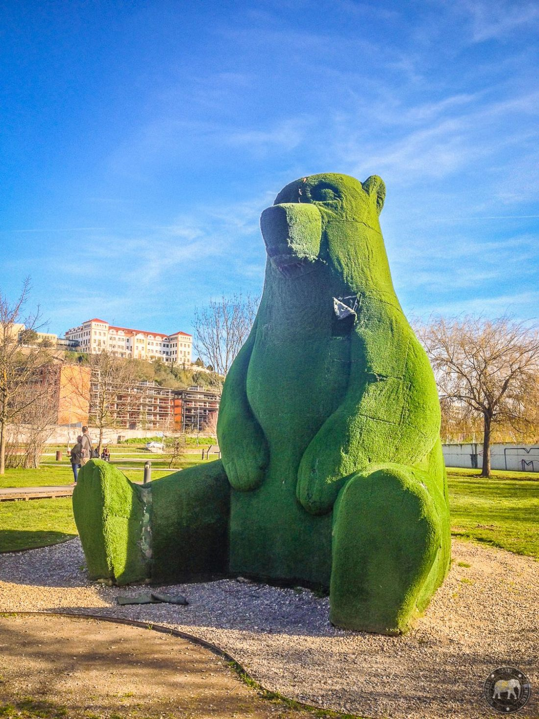 Grass bear - Coimbra, Portugal