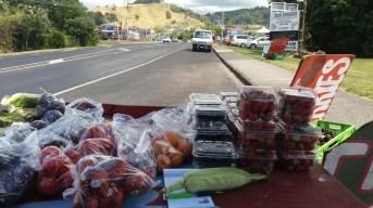 couv vente fruits Waihi