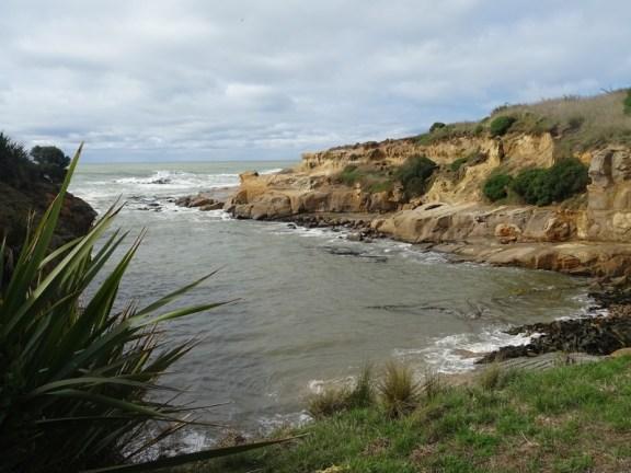 Volontaire vignoble bio Nouvelle Zélande (31)