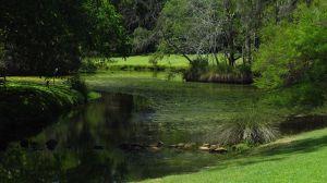 Laguna del interior del Botanic Gardens de Harvey Bay.
