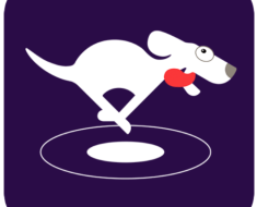 VPN Dog For PC