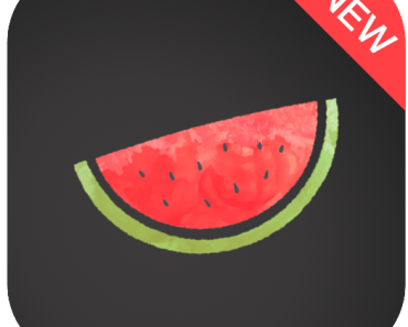Melon VPN on Android