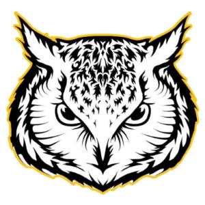 Owl VPN Free For PC