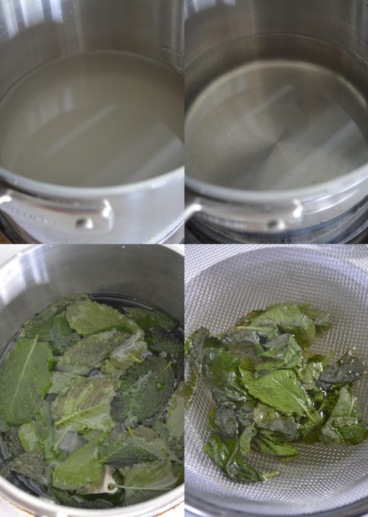 Mint Infused Simple Syrup- VRAI Magazine