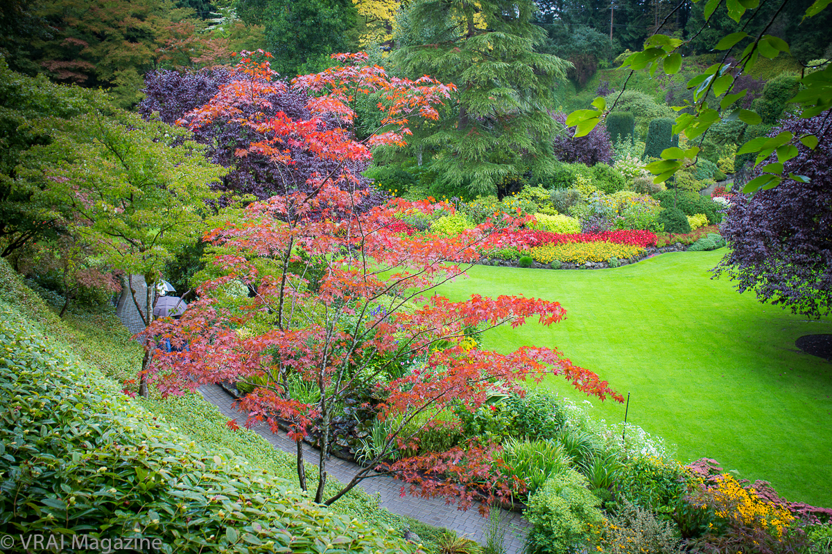 stunning butchart gardens | The Beauty of Butchart Gardens in Victoria, BC
